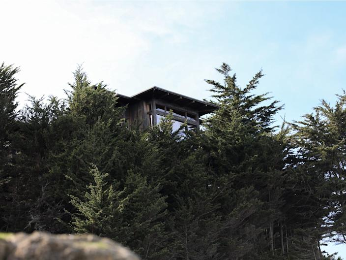The roof of one of Dorsey's Sea Cliff homes juts out from the foliage.