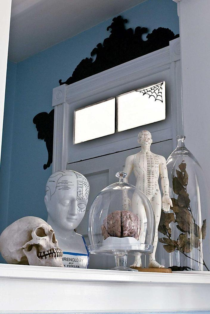 <p>Paired with white, vintage-style medical statuettes, a display of flora and fauna samplings underneath glass cloches creates a mad scientist look. </p>