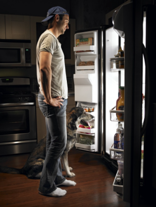 Man and dog staring into open refrigerator