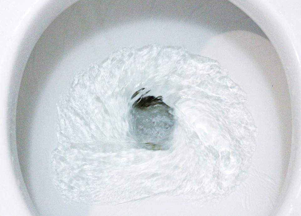 Toilet, Flushing Water, close up, water flushing in toilet, A photo of a white ceramic toilet bowl in the process of washing it off. Ceramic sanitary ware for correcting the need with an automatic flushing device