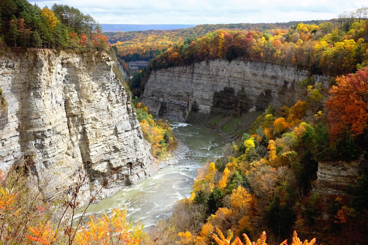 """<p>We've all heard of Niagara Falls, but the region also has some serious fall foliage game. Devil's Hole State Park and Whirlpool State Park both offer several miles of panoramic views of the scenic Lower Niagara River gorge, while nearby Letchworth State Park has been dubbed """"<a href=""""https://parks.ny.gov/parks/79/details.aspx"""">the Grand Canyon of the East.""""</a></p> <p><strong>Peak foliage:</strong> Second and third weeks of October</p>"""
