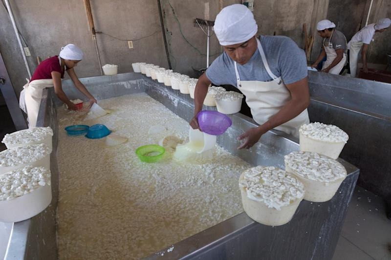 Workers fill tubs with fresh curds in Tizayuca, Mexico.