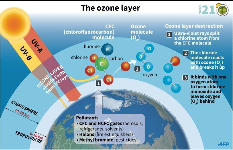 Explanation of the destruction of the ozone layer