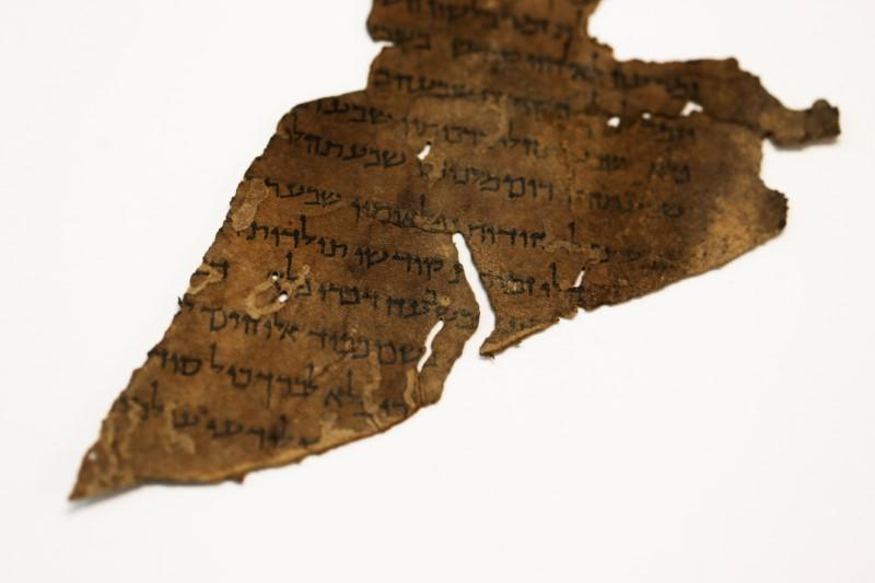 A fragment from the Dead Sea Scrolls that underwent genetic sampling to shed light on the 2,000-year-old biblical trove is shown to Reuters at the Israel Antiquities Authority laboratory in Jerusalem