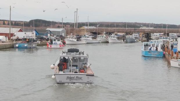 Ground search team unable to locate missing Island fisherman