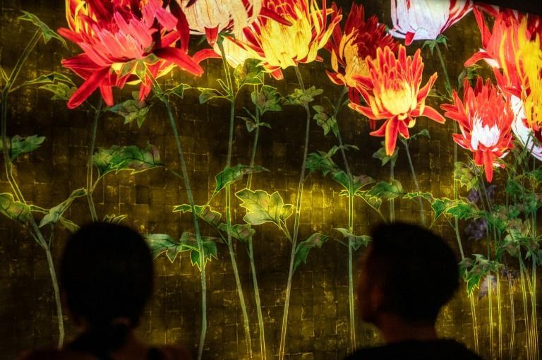 teamLab are internationally renowned for their innovative digital art