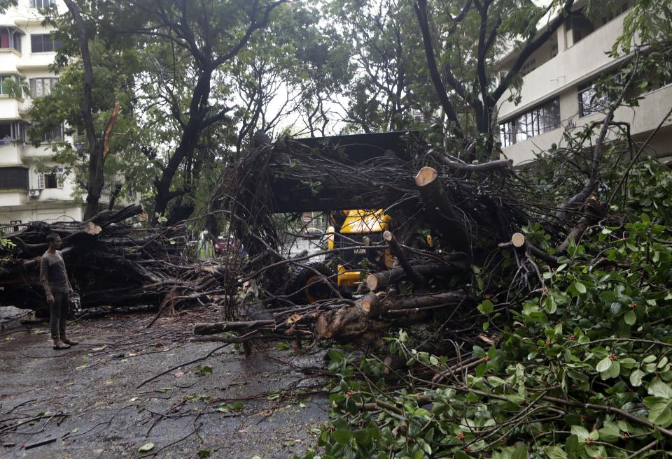 Trees uprooted because of strong winds during cyclone in Mumbai, India, Wednesday,(AP Photo/Rajanish Kakade)