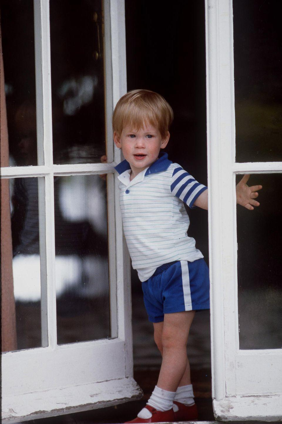 <p>A young Harry smiles for a photo at Highgrove House.</p>