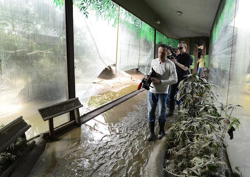 FILE - In this June, 7, 2013 file photo media people walk in a damaged corridor in the zoo in Prague, Czech Republic. More than a decade after many of its animals drowned, the Prague Zoo is counting the cost of yet another devastating flood. In 2002, more than 100 animals died. This time, only a handful of animals were swept away and an army of volunteers are making sure the hundreds that have been evacuated return home as soon as possible. (AP Photo/CTK, Roman Vondrous, File) SLOVAKIA OUT