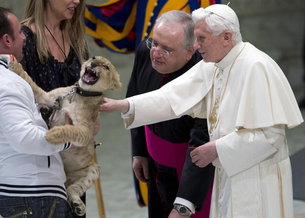 Pope Benedict XVI strokesa lion cub as he greets circus artists and workers, during an audience he held in the Pope Paul VI hall, at the Vatican, Saturday, Dec. 1, 2012. Benedict clapped and watched amused as circus workers flipped, flopped, juggled and twisted before him in what the Vatican has called a historic audience to make street performers and other itinerant entertainers feel like they belong to the church. (AP Photo/Andrew Medichini)