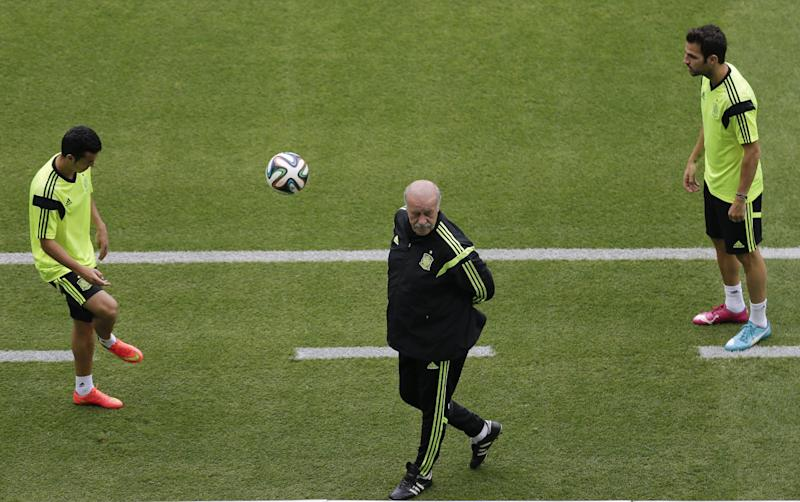 'Mature' Spain expected to deliver against Dutch