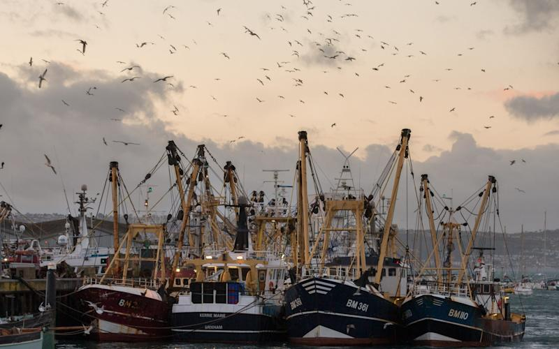 The British fishing industry is hoping for a post-Brexit renaissance.  - Matt Cardy /Getty Images