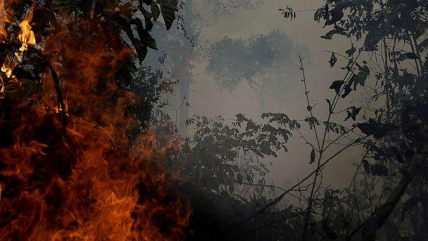 PHOTO: A fire burns a tract of Amazon jungle as it is cleared by loggers and farmers near Porto Velho, Brazil, August 27, 2019. (Ricardo Moraes/Reuters)