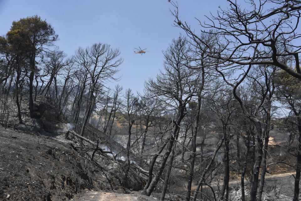 A helicopter flies above the burning area near Ziria village, east of Patras, Greece, Sunday, Aug. 1, 2021. A wildfire that broke out Saturday in western Greece forced the evacuation of four villages and people on a beach by the Fire Service, the Coast Guard and private boats, authorities said. (AP Photo/Andreas Alexopoulos)