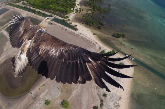 "<p>An actual birds-eye view of Indonesia. <i>(Photo: By <a href=""http://www.dronestagr.am/author/capungaero/"" title=""Posts by capungaero"">capungaero</a>)</i></p>"