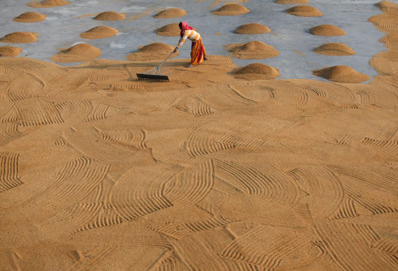 FILE PHOTO: A worker spreads rice for drying at a rice mill on the outskirts of Kolkata