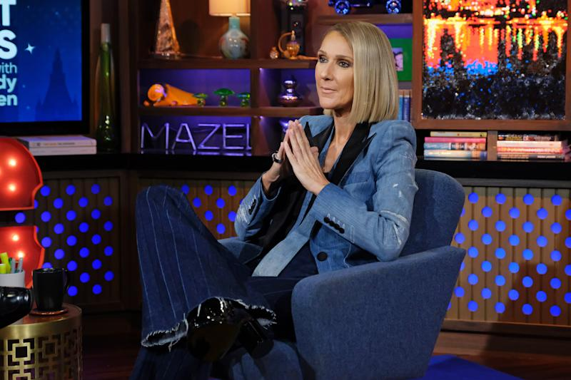 Celine Dion pictured on a talk show