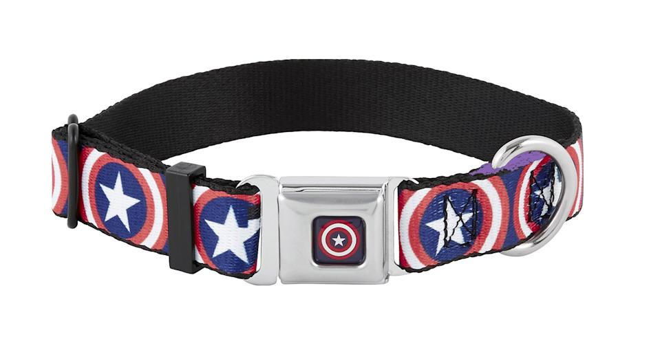Buckle-Down Captain America Shield Seatbelt Buckle Dog Collar, $19.95, chewy.com (Photo: Chewy)
