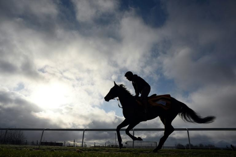 Betting on racing is ingrained in Britain's sporting culture