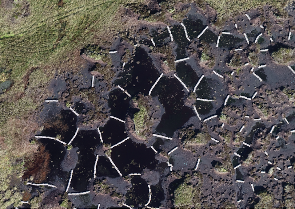 An aerial view of Fleet Moss, a degraded peatland in the Yorkshire Dales (Christopher Osborne)