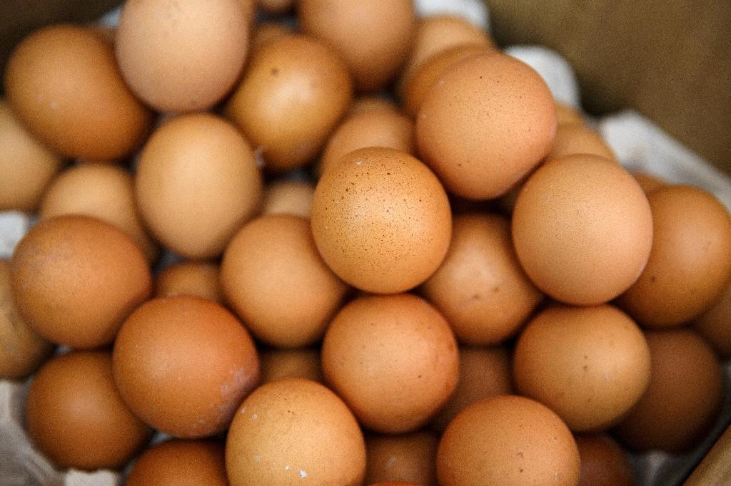 The insecticide fipronil has now been discovered in eggs in 17 European countries since the scandal came to light at the start of August, and was even found as far away as Hong Kong (AFP Photo/Tengku BAHAR)
