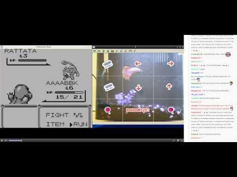 """<p>When we say people were excited to watch Grayson Hopper, a fish, <a href=""""https://arstechnica.com/gaming/2014/08/an-actual-fish-has-been-playing-pokemon-red-for-135-hours-now/"""" rel=""""nofollow noopener"""" target=""""_blank"""" data-ylk=""""slk:play Pokémon"""" class=""""link rapid-noclick-resp"""">play Pokémon</a>, we mean they were <em>excited</em>. Just look at the rapid fire comments at the time of the livestream shown in the video.</p><p><a href=""""https://www.youtube.com/watch?v=48-qOC4fCdk"""" rel=""""nofollow noopener"""" target=""""_blank"""" data-ylk=""""slk:See the original post on Youtube"""" class=""""link rapid-noclick-resp"""">See the original post on Youtube</a></p>"""
