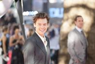 <p>Harry Styles on the 'Dunkirk' red carpet (WB) </p>