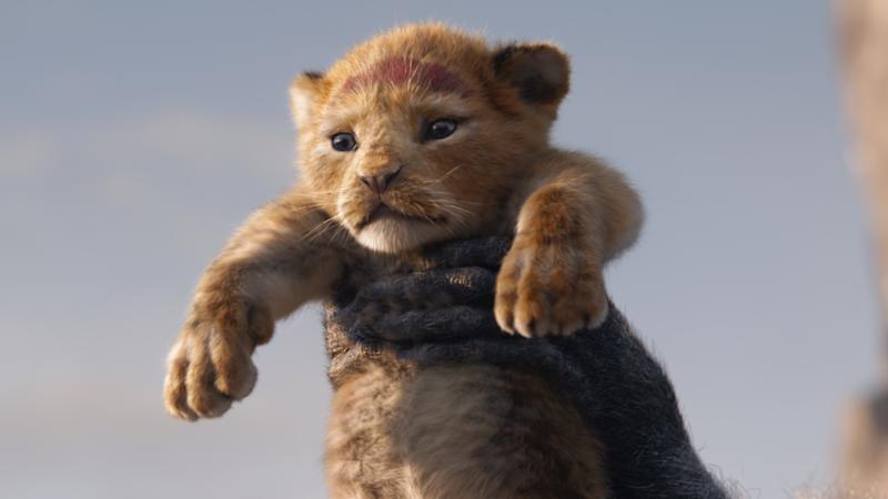 Jon Favreau's new take on 'The Lion King' borrows numerous shots from the 1994 original version. (Credit: Disney)