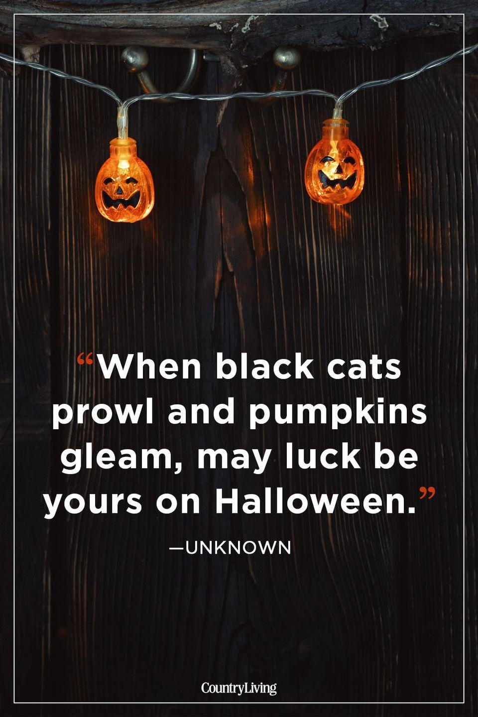 """<p>""""When black cats prowl and pumpkins gleam, may luck be yours on Halloween.""""</p>"""