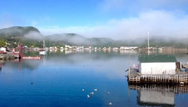 The population of Little Bay Islands dwindled from 500 down to just 55 residents by 2019. Now, a bustling community of seasonal residents is revitalizing the town. (Submitted by Carolyn Strong - image credit)