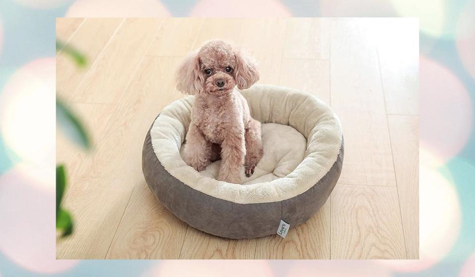 Aw, the baby! Aw, the baby! Aw, the baby! Aw, the baby! Um, oh yeah...you should buy one of these pet beds. (Photo: Amazon)