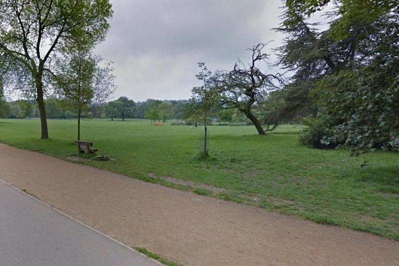Dulwich Park: the grassy area is located in the heart of the leafy south London neighbourhood of Dulwich (Google)