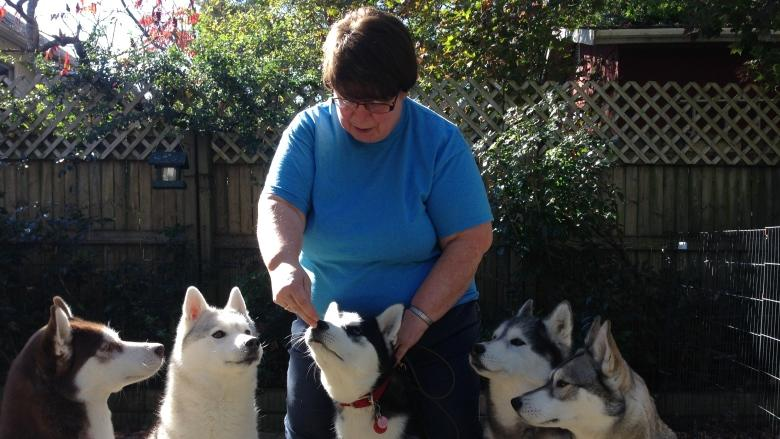 Halifax woman warns of leptospirosis after her husky dies