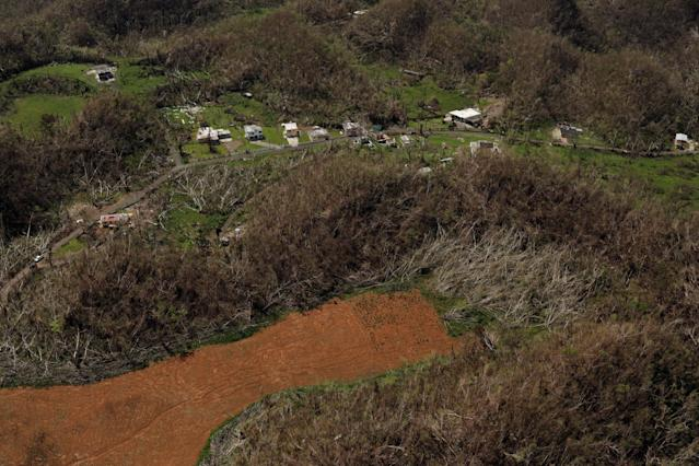 <p>Buildings and trees damaged by the winds of Hurricane Maria are seen near Lares, Puerto Rico, Oct. 6, 2017. (Photo: Lucas Jackson/Reuters) </p>