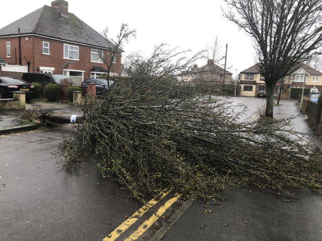A fallen tree in the Longlevens area of Gloucester. (PA)