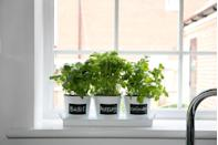 """<p>Planning on growing your own herbs this year? These lovely affordable pots are perfect for the window sill.</p><p><strong>READ MORE</strong>: <a href=""""https://www.housebeautiful.com/uk/garden/a30415704/gardeners-trend-predictions/"""" rel=""""nofollow noopener"""" target=""""_blank"""" data-ylk=""""slk:3 emerging gardeners predict the key 2020 trends"""" class=""""link rapid-noclick-resp"""">3 emerging gardeners predict the key 2020 trends</a></p>"""