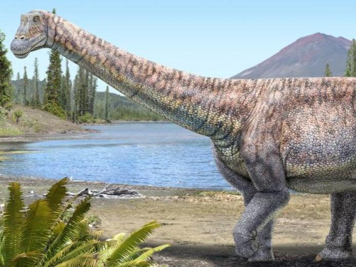 An artist's impression of the plant-eating dinosaur whose remains scientists have discovered in the Atacama desert in Chile (Reuters)