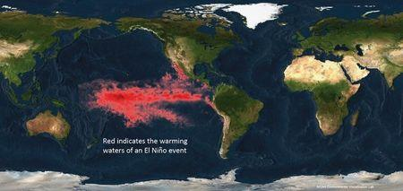 NOAA image shows the warming waters of an El Nino event in the Pacific Ocean