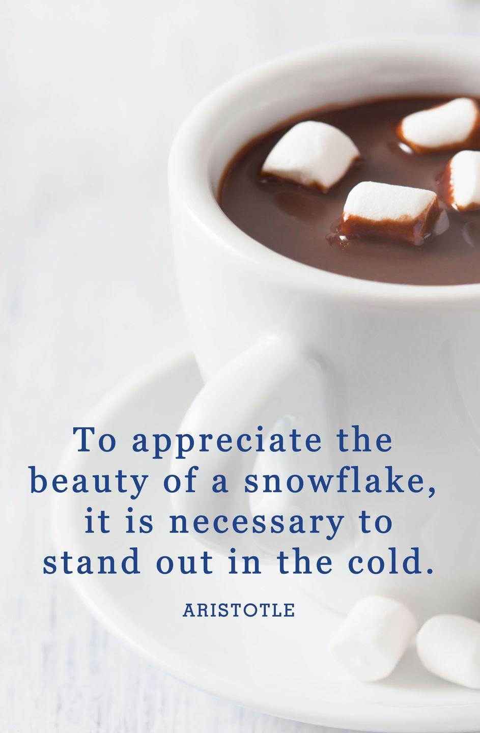 "<p>""To appreciate the beauty of a snowflake, it is necessary to stand out in the cold.""</p>"