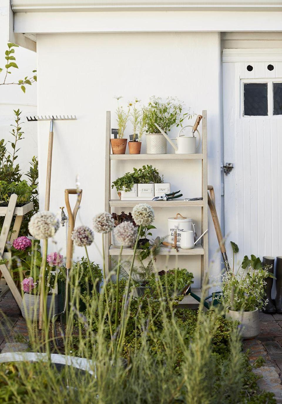 """<p>As the weather warms up, it's the ideal time to slip on your <a href=""""https://www.housebeautiful.com/uk/garden/g31246169/gardening-gloves/"""" rel=""""nofollow noopener"""" target=""""_blank"""" data-ylk=""""slk:gardening gloves"""" class=""""link rapid-noclick-resp"""">gardening gloves</a> and tend to your outdoor space. Designed with four shelves of varying depths, this ladder-style shelving unit is ideal for neatly displaying pots, plants and garden accessories.</p><p><a class=""""link rapid-noclick-resp"""" href=""""https://go.redirectingat.com?id=127X1599956&url=https%3A%2F%2Fwww.johnlewis.com%2Fjohn-lewis-partners-burford-garden-tall-garden-shelf-ladder-fsc-certified-eucalyptus-wood%2Fp3809267&sref=https%3A%2F%2Fwww.redonline.co.uk%2Finteriors%2Fhomeware%2Fg36003381%2Fjohn-lewis-garden-collection-spring-summer%2F"""" rel=""""nofollow noopener"""" target=""""_blank"""" data-ylk=""""slk:SHOP NOW"""">SHOP NOW</a></p>"""
