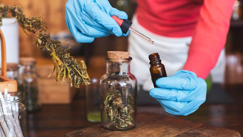 Adult Preparing Homeopathic Medicine From Cannabis Buds.