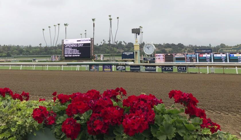 Flowers frame a new infield video board and the finish line at Santa Anita Park on Sept. 27, 2019.