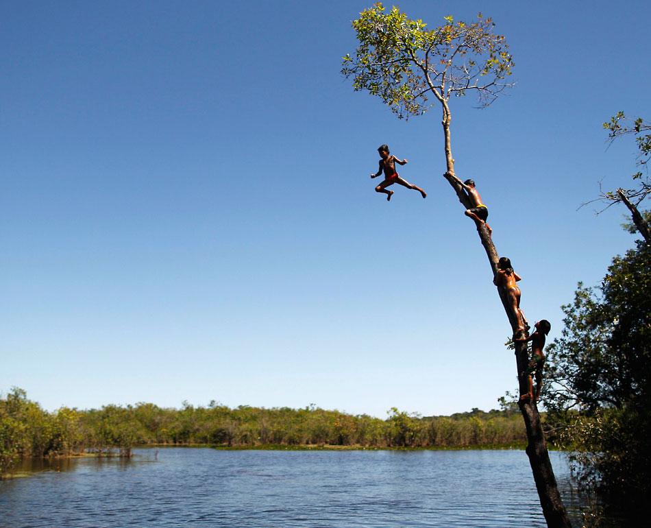 Yawalapiti children climb a tree to jump into the Xingu River in the Xingu National Park.