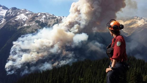 B.C. says it welcomes the opportunity to share wildfire resources across jurisdictions.  (B.C. Wildfire Service/Reuters - image credit)