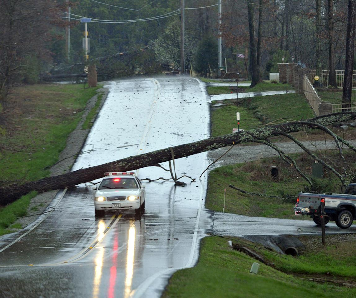 A tree blocks Ford Chapel Road in Harvest, Ala., after a reported tornado passed through the area early Friday, March 2, 2012. (AP Photo/The Huntsville Times, Bob Gathany)