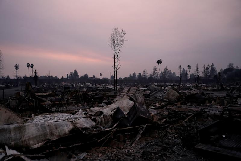 A burnt tree stands amidst the destroyed Journey's End Mobile Home Park during the Tubbs Fire in Santa Rosa.
