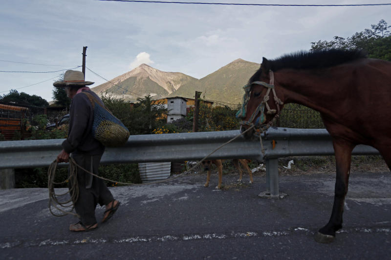 A man leads his horse through San Juan Alotenango, Guatemala, Tuesday, Nov. 20, 2018, backdropped by the Volcan de Fuego, or Volcano of Fire. The volcanology institute reported that activity subsided Monday evening. Hundreds of families who heeded the call of disaster coordination authorities to evacuate 10 communities began returning to their homes Tuesday. (AP Photo/Moises Castillo)