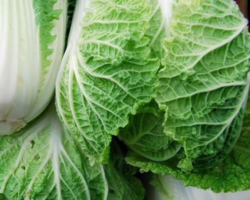 Chinese cabbage, a brassica popular in Chinese cooking, scored just shy of 92 on the nutrient density scale.