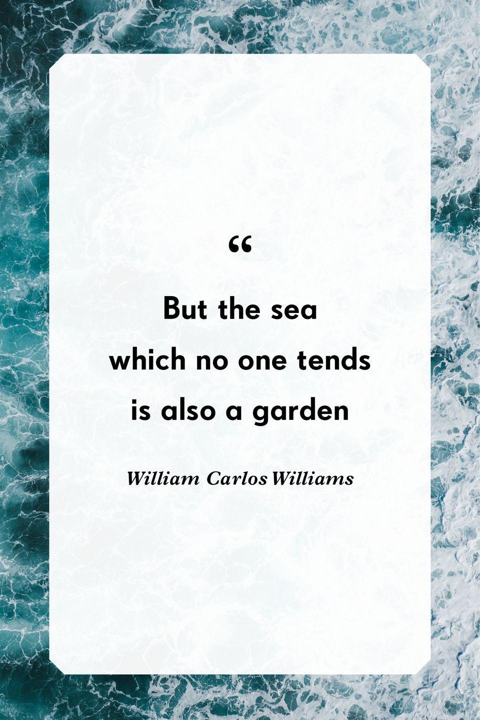 """<p>""""But the sea<br>which no one tends<br>is also a garden""""</p>"""