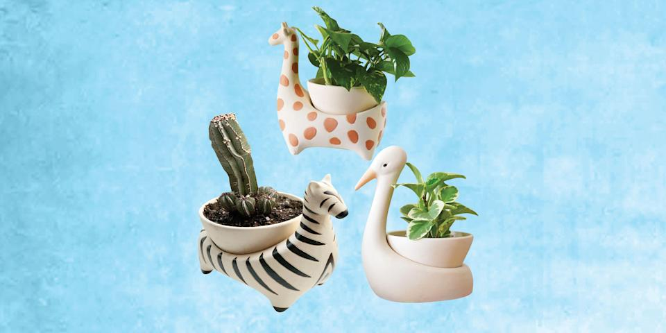 "<p>If you're one of the <em><a href=""https://www.housebeautiful.com/lifestyle/a35966943/how-the-pandemic-has-changed-the-houseplant-industry/"" rel=""nofollow noopener"" target=""_blank"" data-ylk=""slk:many"" class=""link rapid-noclick-resp"">many</a></em><a href=""https://www.housebeautiful.com/lifestyle/a35966943/how-the-pandemic-has-changed-the-houseplant-industry/"" rel=""nofollow noopener"" target=""_blank"" data-ylk=""slk:people"" class=""link rapid-noclick-resp""> people</a> whose <a href=""https://www.housebeautiful.com/houseplants-101/"" rel=""nofollow noopener"" target=""_blank"" data-ylk=""slk:houseplant"" class=""link rapid-noclick-resp"">houseplant</a> collection has seriously grown this year, we have good news:<a href=""https://www.housebeautiful.com/design-inspiration/a36037464/justina-blakeney-childhood-decorate-wild/"" rel=""nofollow noopener"" target=""_blank"" data-ylk=""slk:Justina Blakeney"" class=""link rapid-noclick-resp""> Justina Blakeney </a>, designer, author, and founder of The Jungalow, has just released three amazingly cute planters in the shape of animals. The Savannah Garden collection is the first product Blakeney designed after she and her team began working from home, the designer shared via an <a href=""https://www.instagram.com/p/CNs0Bk0HQuJ/"" rel=""nofollow noopener"" target=""_blank"" data-ylk=""slk:Instagram post"" class=""link rapid-noclick-resp"">Instagram post</a>. As such, it has a special place in her heart—and will likely have a special one in your home, too. </p><p>""I wanted to design some decorative pots with drainage to help bring life and fun into peoples homes, while also considering the health of the plants,"" she explained in the post (where she also shared her first concept sketch!). The collection includes three planters, in the shape of a zebra, giraffe, and egret, all of which are available exclusively through <a href=""https://www.housebeautiful.com/shopping/g34609188/2021-best-home-stores/"" rel=""nofollow noopener"" target=""_blank"" data-ylk=""slk:The Jungalow"" class=""link rapid-noclick-resp"">The Jungalow</a> for $79 each.</p><p>""Now that these pots are here and in-store, seeing them reminds me of all the creative projects my team and I have pushed forward in the last 12 months, and in this insane year with crazy high highs and super low lows,"" Blakeney says in the post."" Releasing these into the world makes me feel so proud of our resilience!"" Shop all three below! </p>"